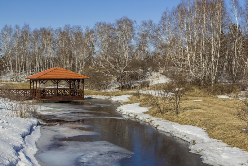 Sorgente la neve si fonde nella foresta ed il fiume ? sciolto Paesaggio della molla della foresta Supporto conico dal fiume nella immagine stock libera da diritti