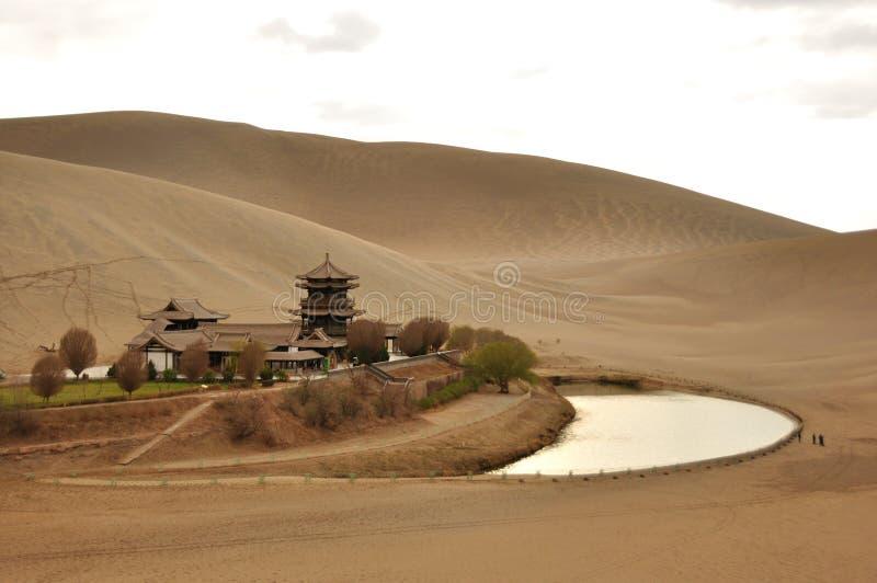 Sorgente nel deserto immagini stock libere da diritti