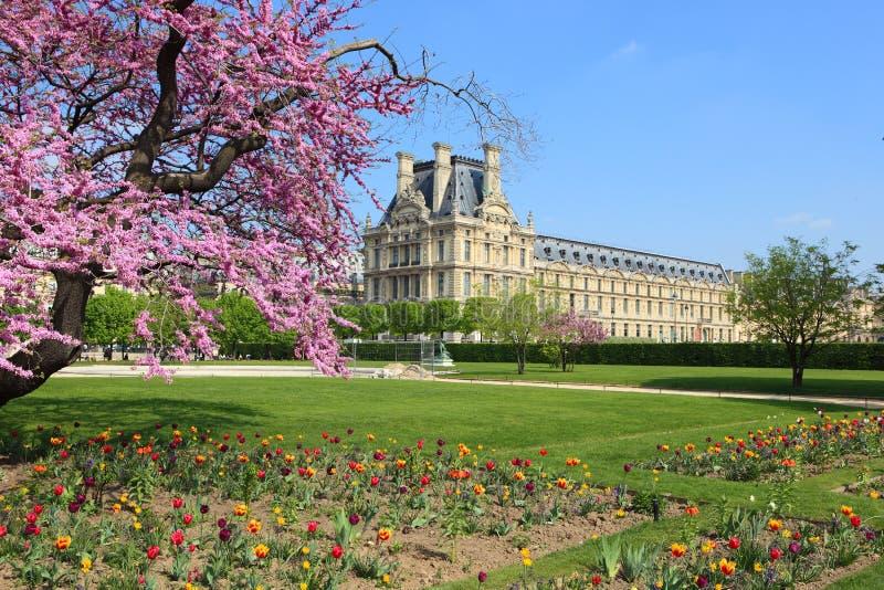 Sorgente a Parigi, Francia fotografia stock libera da diritti