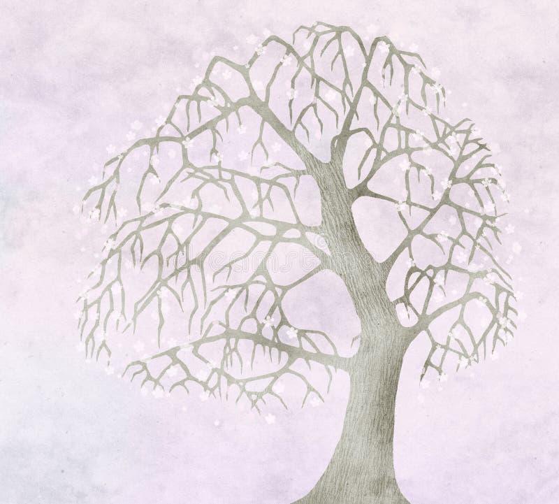 Sorgente per vecchio di melo illustrazione vettoriale