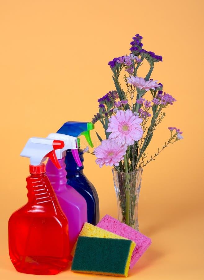 Sorgente pulita e fresca fotografia stock libera da diritti