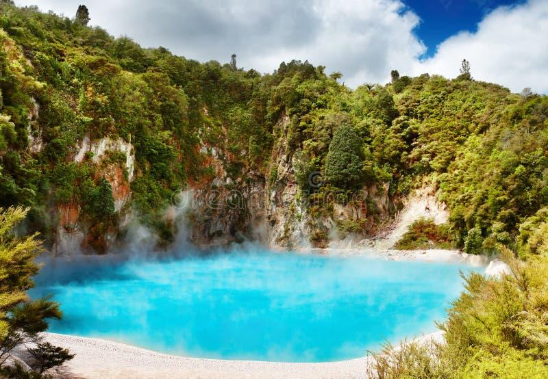 Sorgente termica calda, Nuova Zelanda fotografie stock
