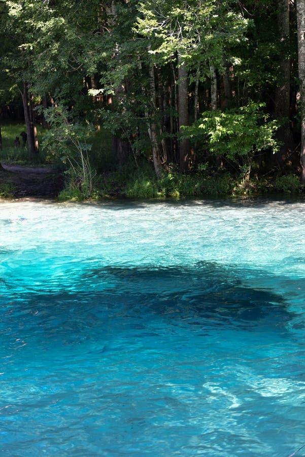 Sorgenti d'acqua fresche Florida U.S.A. con bella chiara acqua blu fotografie stock libere da diritti