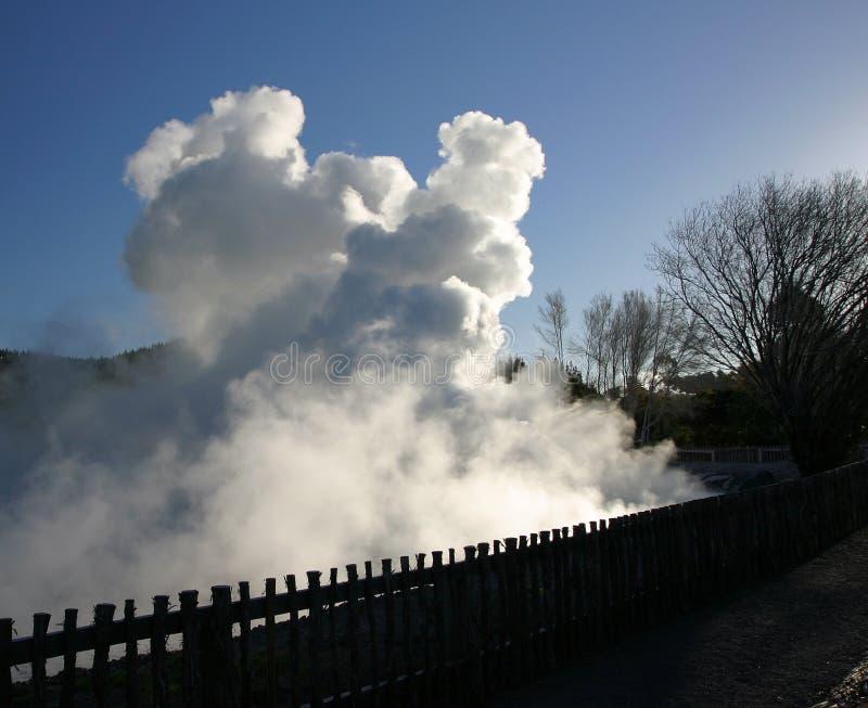 Sorgenti geotermiche, Nuova Zelanda fotografia stock libera da diritti