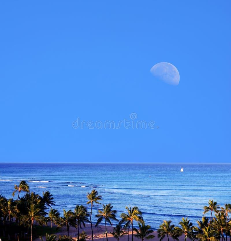 Sorgere della luna Honolulu Hawai di Waikiki immagine stock
