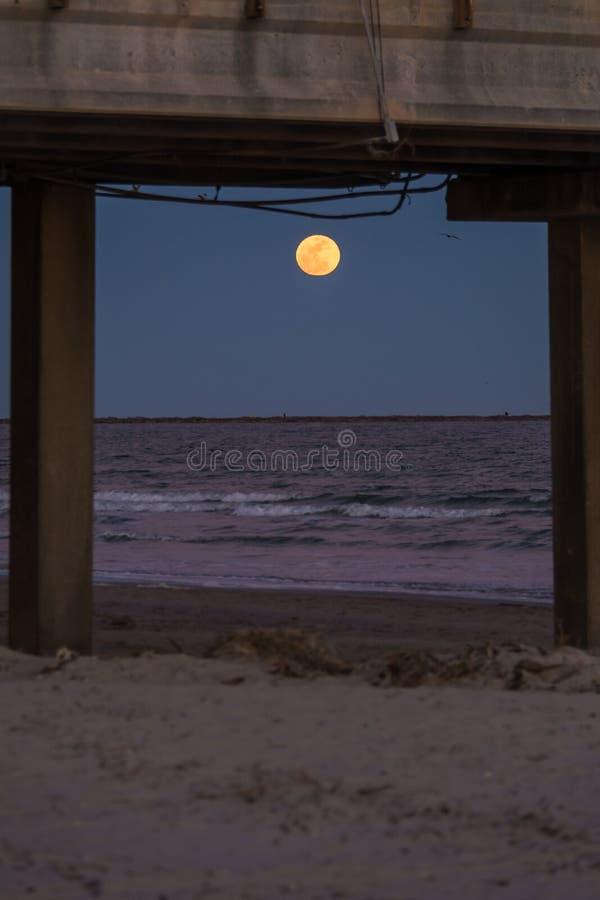 Sorgere della luna sopra l'oceano fotografia stock libera da diritti