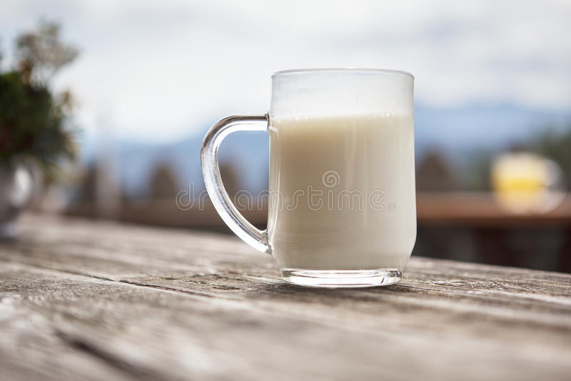 Soro de leite coalhado fresco imagens de stock royalty free