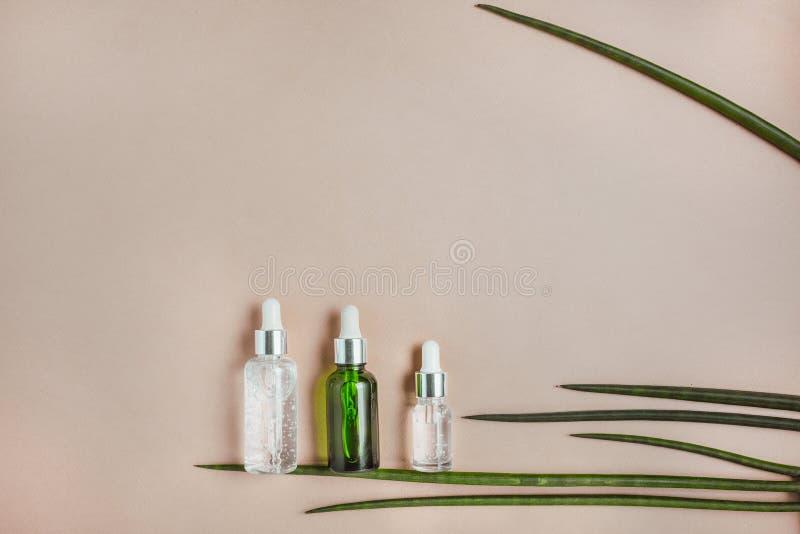 soro do cabelo Cabelo e pele naturais do cuidado Conceito saud?vel do cabelo Configuração lisa, minimalismo, cor pastel imagens de stock royalty free