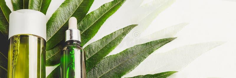 Soro e champô do cabelo Cabelo e pele naturais do cuidado Restauração do cabelo do conceito bandeira foto de stock royalty free