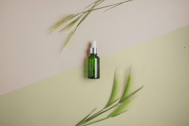Soro natural, óleo para o cabelo e cuidados com a pele Conceito de tratar o cabelo para a seca e a fragilidade Configuração lisa, imagem de stock royalty free