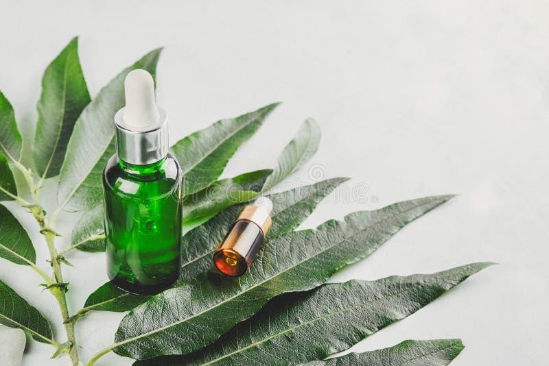 Soros naturais O conceito da injeção cosmética é ácido hialurónico, botulin, soro imagens de stock