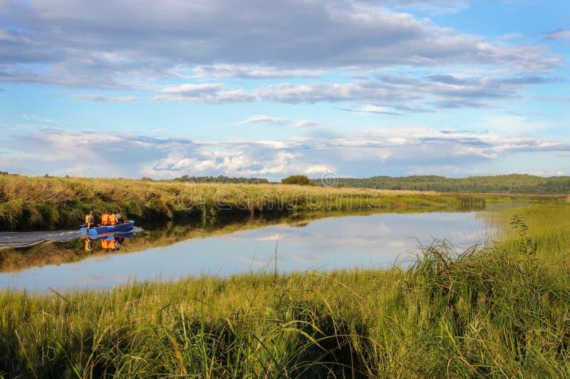 Sorotirivier in het gebied van Pskov, Rusland stock foto