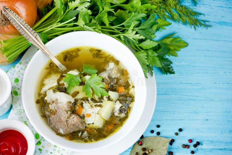 Sorrel σούπα με το κρέας, τις πατάτες, το αυγό και τα πράσινα στοκ φωτογραφία