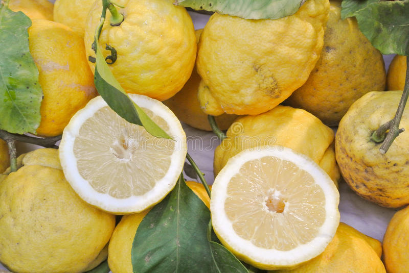 Download Sorrento lemons stock image. Image of ripe, foreground - 32216803