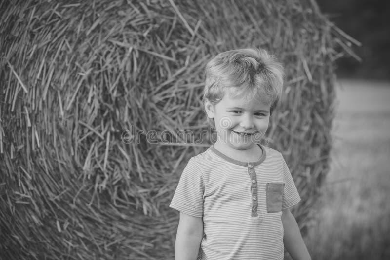 Sorriso alla balla di fieno, estate del ragazzino fotografia stock