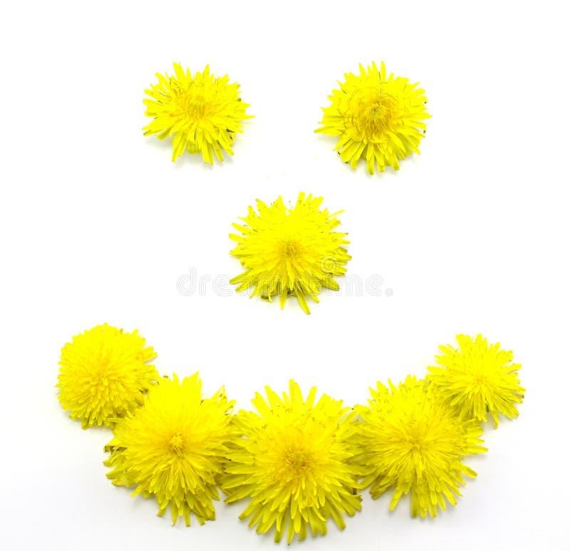 Sorriso amarelo fotos de stock