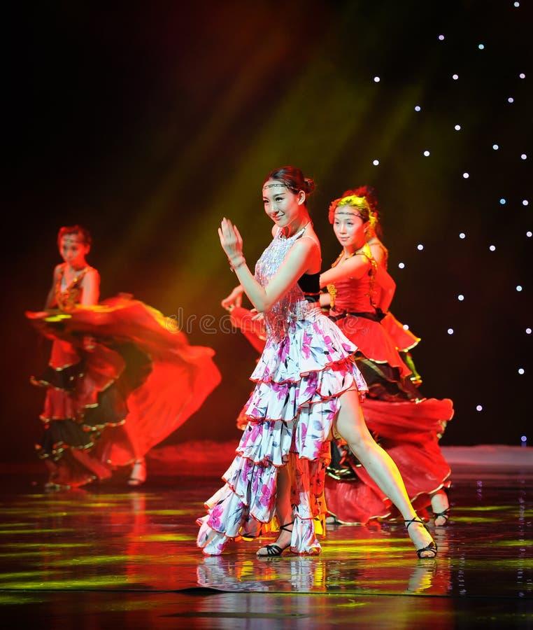 Sorriso ---A dança nacional espanhola fotografia de stock