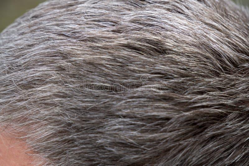Sorriso ocasional da edição do homem superior e da queda de cabelo foto de stock