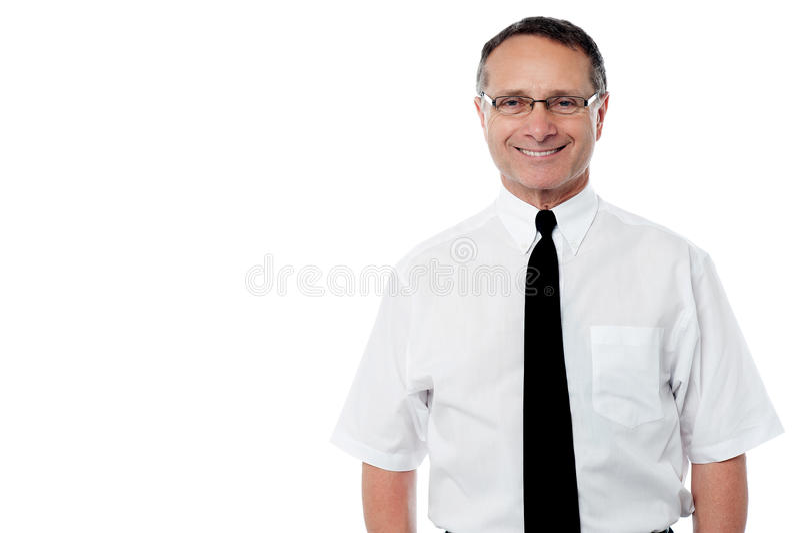 Sorriso superior do executivo empresarial imagem de stock royalty free