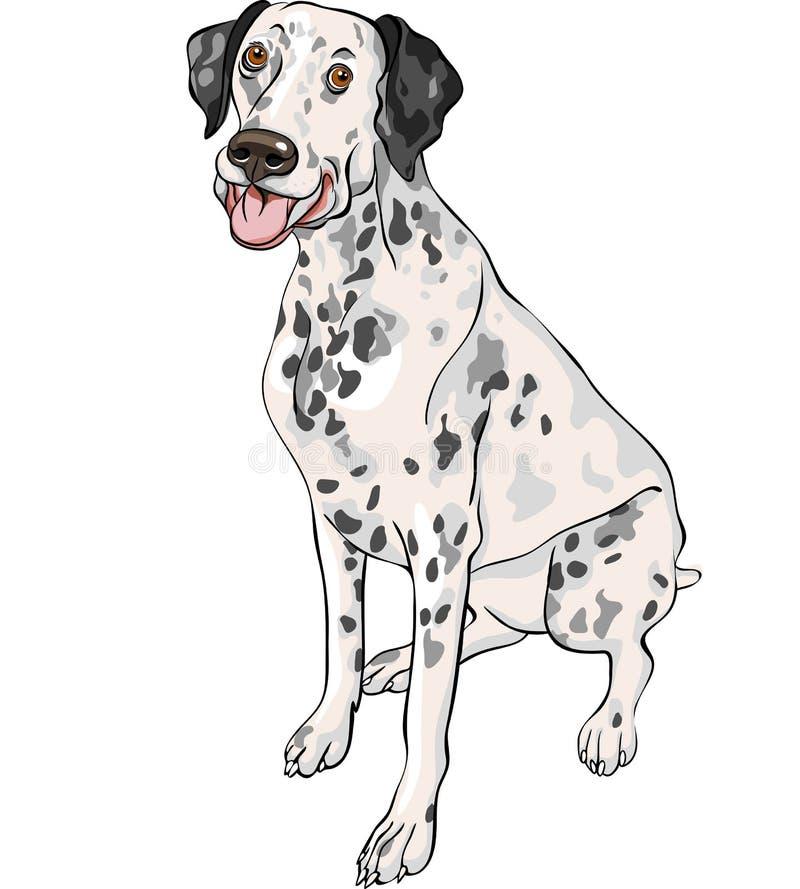sorrisos Dalmatian da raça do cão do esboço ilustração royalty free