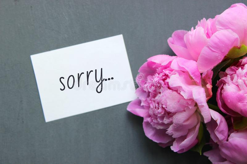 Sorry on the white paper. Sorry card message on white postcard and pink flowers Flatley style decoration on grey background stock photos