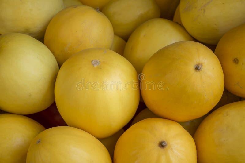 Sort de melons jaunes image libre de droits