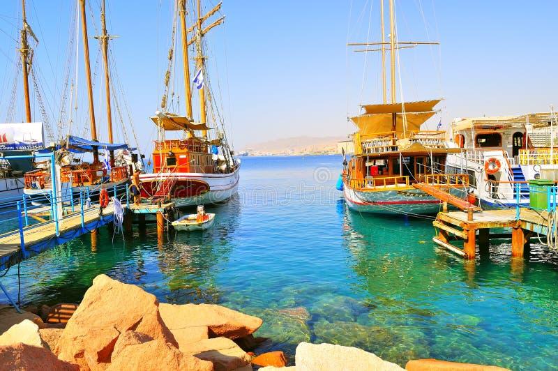 Sorte in Eilat stockfotografie