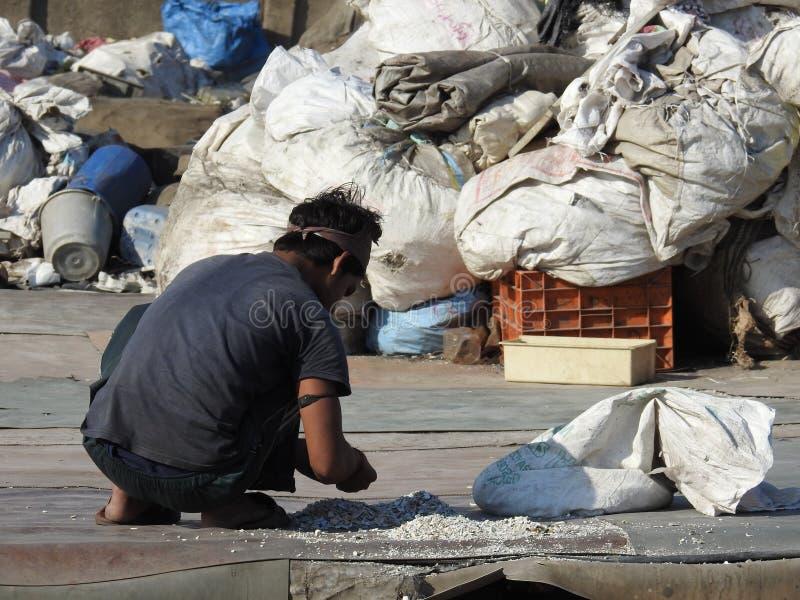 Sortera ut plast-avfalls i den Dharavi slumkvarteret, Mumbai, Indien royaltyfri fotografi
