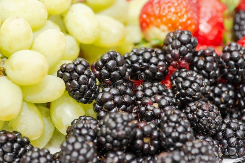 Sorterad blandning av nya organiska björnbär, jordgubbar och druvor royaltyfri bild