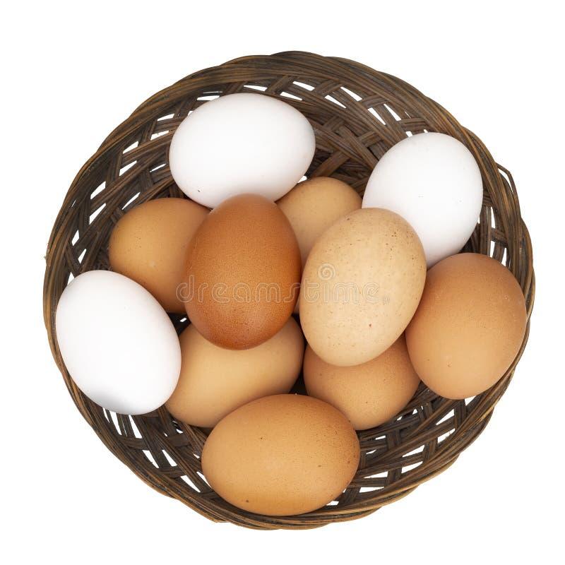 Sorterad höna, hönaägg i en korg som isoleras på vit Olika färger: brun vitt och spräckligt royaltyfri bild