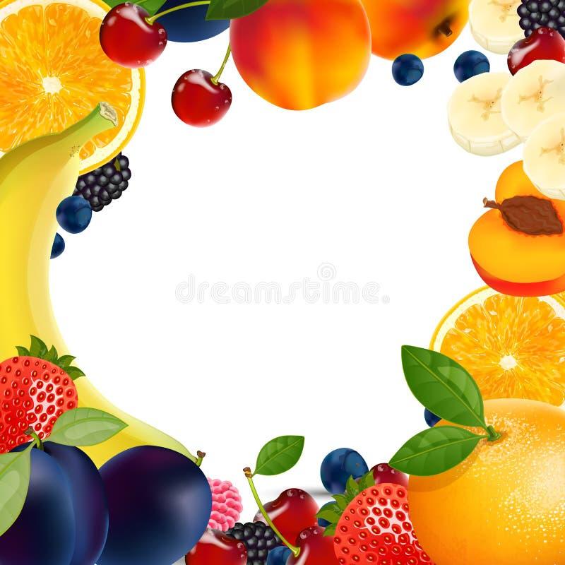 Sortes da fruta ilustração royalty free