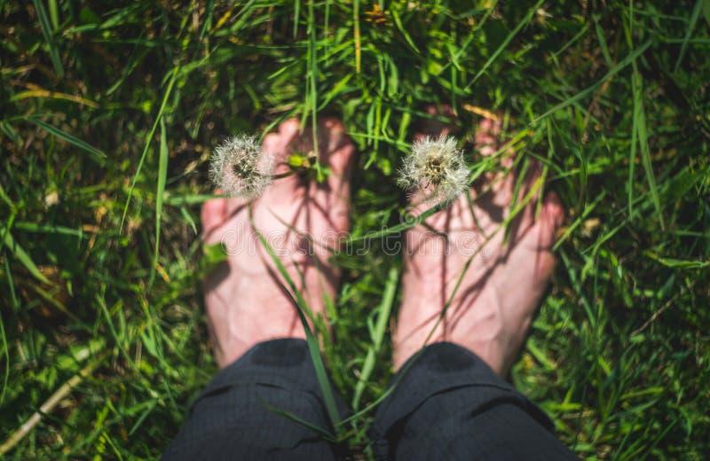 Sortez et explorez et appréciez le concept de nature image stock