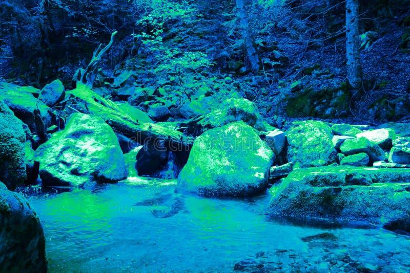 Sortie des algues de chlorophylle pendant l'ère primaire photographie stock