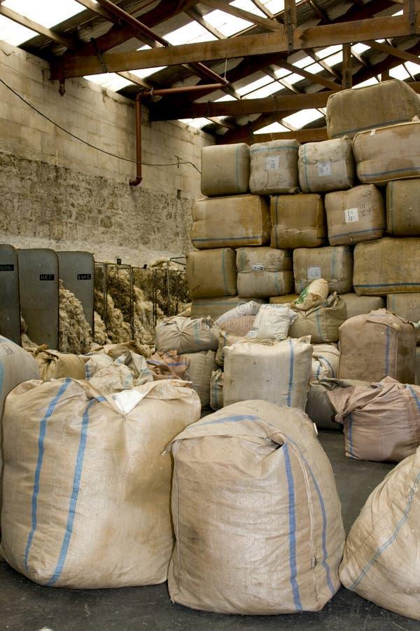 Sortieren der Wollen für Transport lizenzfreie stockfotos