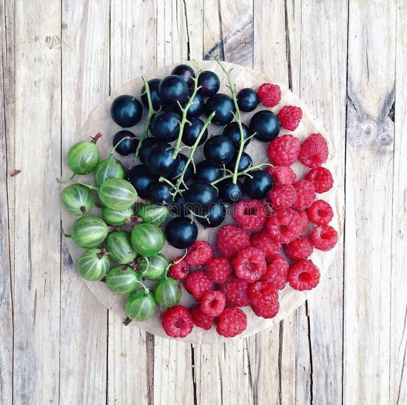 Sortierte Beeren der Himbeere, der Schwarzen Johannisbeere und der Stachelbeere lizenzfreie stockfotografie