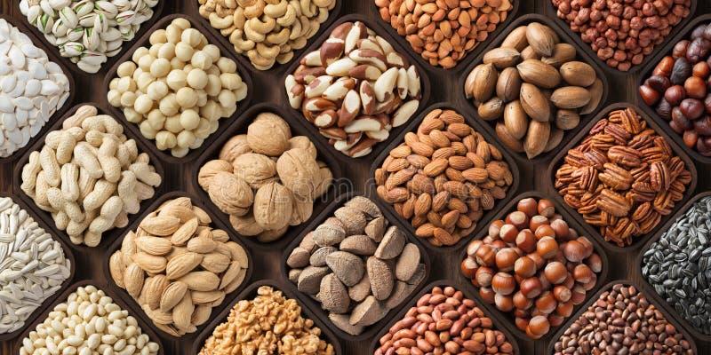 Sortierter Nusshintergrund, große Mischungssamen rohe Nahrungsmittel: Pekannuss, Haselnüsse, Walnüsse, Pistazien, Mandeln, Macada stockbilder