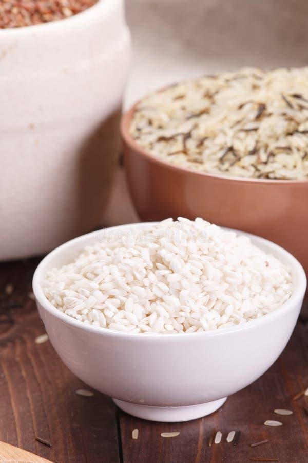 Sortiment av rice royaltyfri fotografi