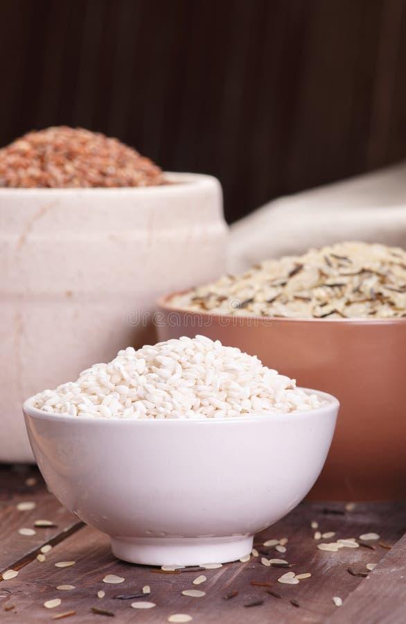 Sortiment av rice royaltyfria foton