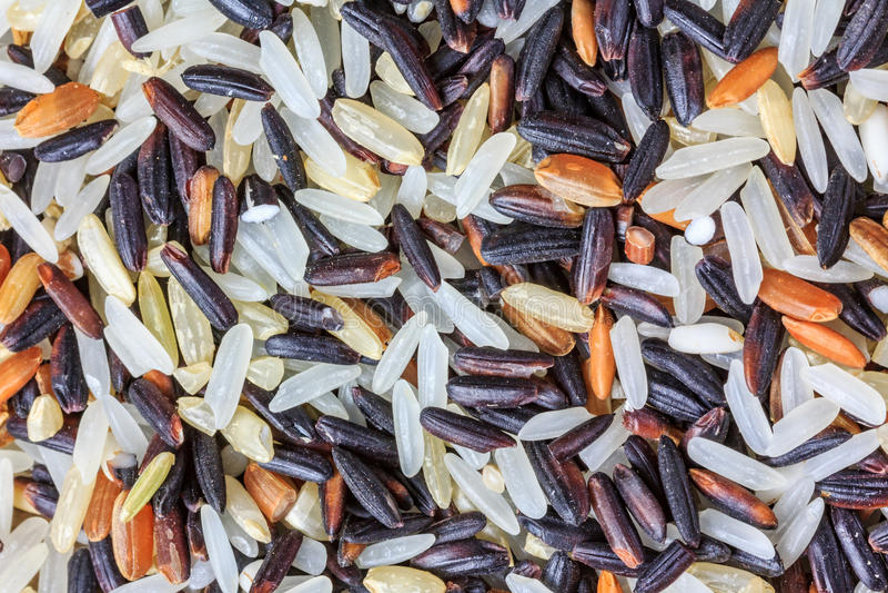 Sortiment av rice arkivfoto