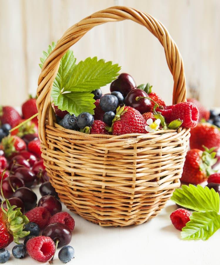 Sortiment av sommarbär i korgen royaltyfria foton