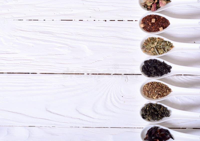 Sortiment av torr tea royaltyfri bild