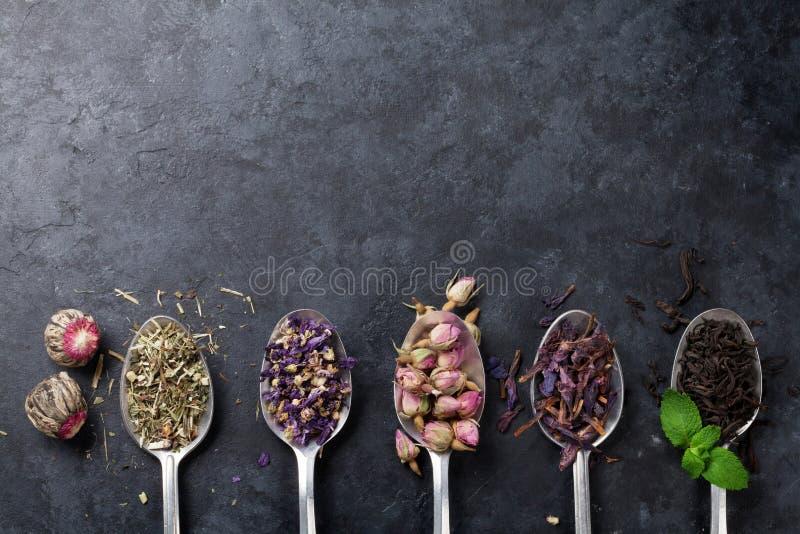 Sortiment av torrt te i skedar arkivbilder