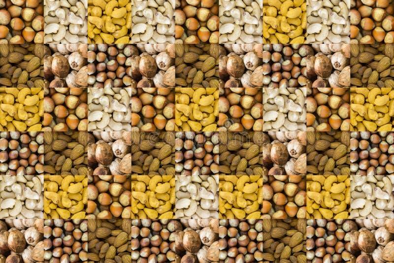 Sortimentet av olika muttrar ställde in av helhet för kokosnöt för mandlar för kasjuhasselnöthasselnötter hundra design för meny  arkivbild