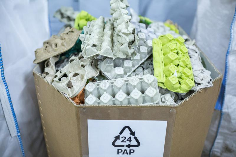 Sorting recyclables. The sorted papier mache - paper pulp egg trays, chewed paper, is placed in a container with the appropriate stock photos