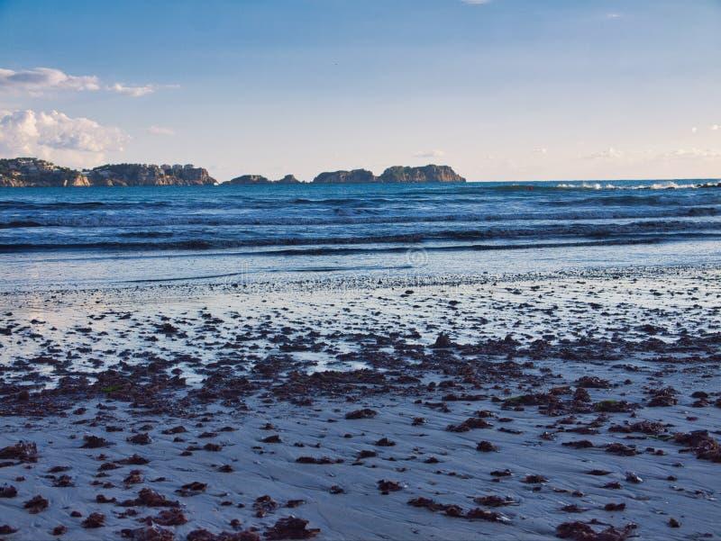 Sorveglianza delle isole dei malgrats con una certa alga sulla sabbia immagini stock libere da diritti