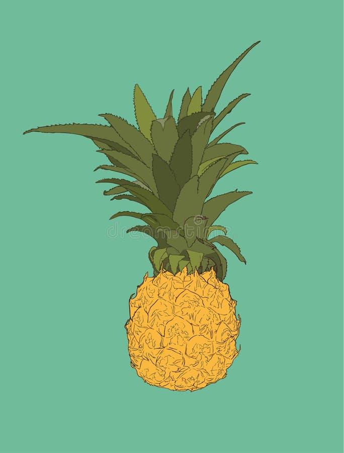 Sosnowy jabłko, tropikalnej owoc nakreślenia wektor royalty ilustracja
