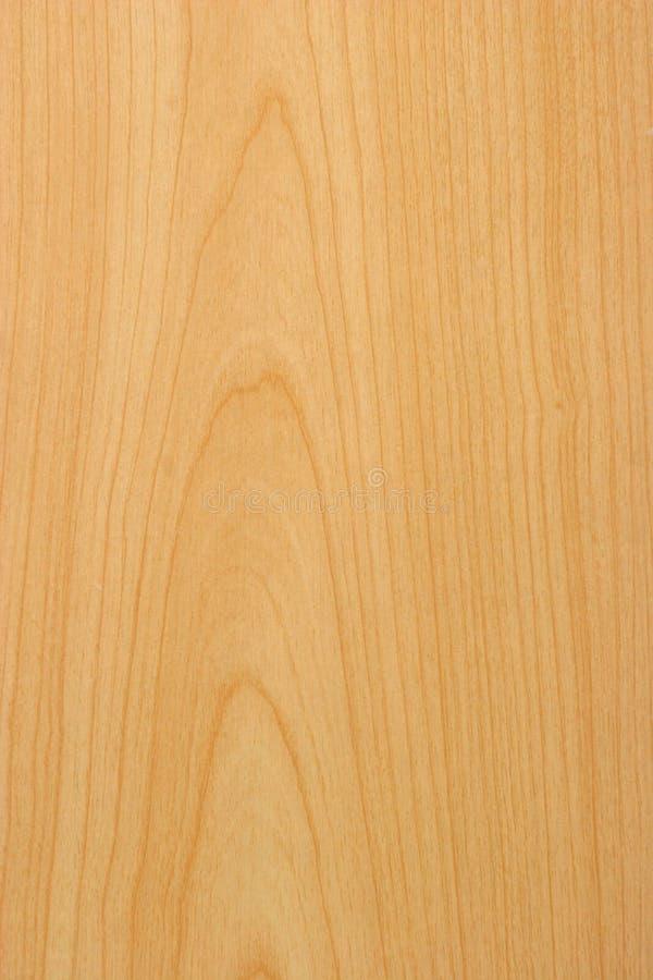 sosnowy tekstury drewna obraz royalty free