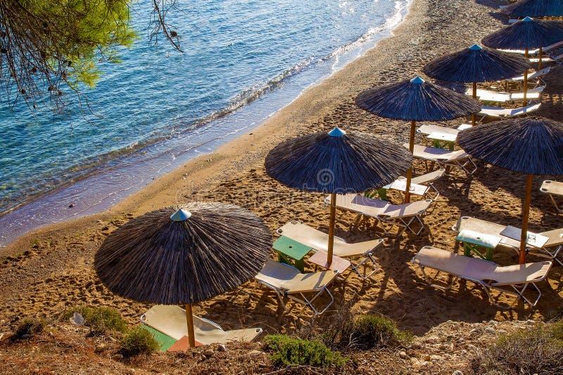 Sosny, świeże powietrze, przejrzysta wodna markiza i krzesła na plaży, zdjęcie stock