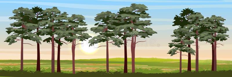 Sosny i łąka ilustracja wektor
