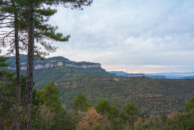 Sosny, klify i góry Pirenejów zdjęcia royalty free
